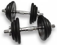 Гантели наборные 2 шт по 19,5 кг Alex DB-02-39