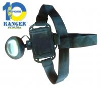 Фонарь налобный Ranger BL-536-6 SMD